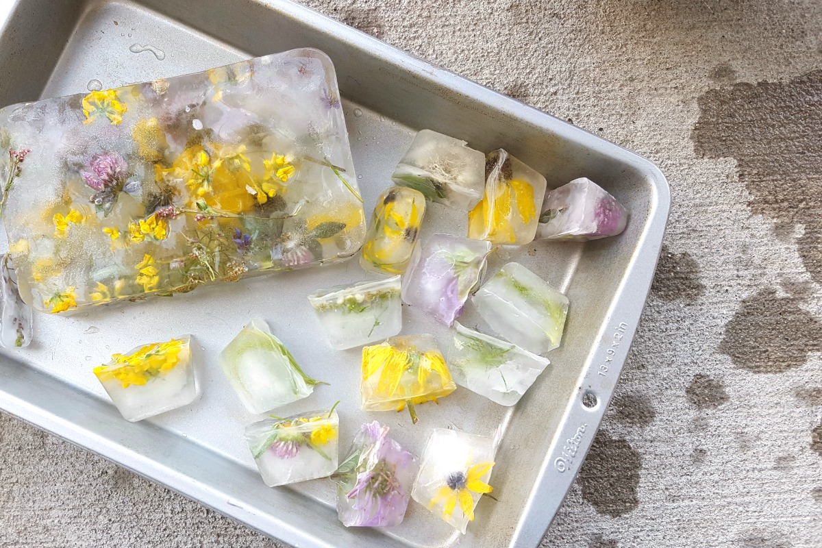 Flower Ice - A Nature Play Activity