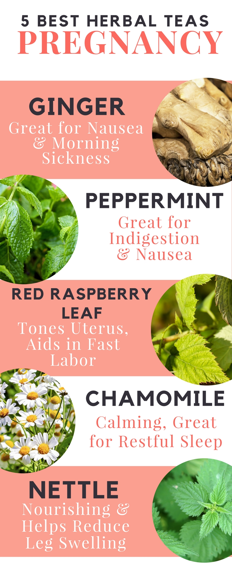 The best herbal teas for pregnancy. Helps with morning sickness, heartburn and fast labor!