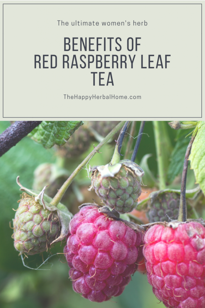 The benefits of red raspberry leaf are outstanding for womens health