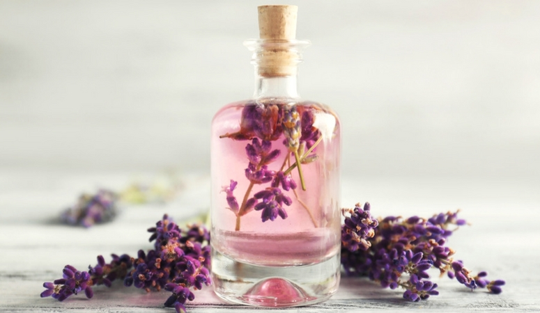 Lavender Essential Oil Benefits & Uses