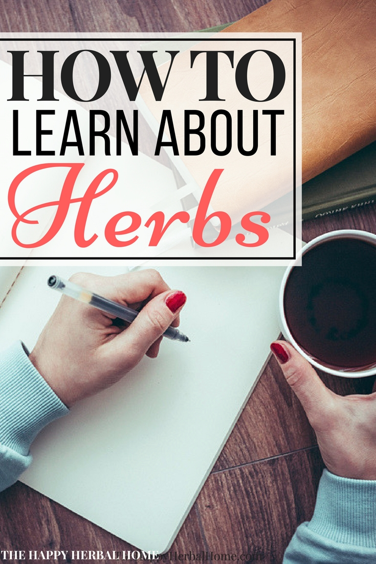 How to teach yourself about herbs. Want to learn herbalism? These simple steps will start you on your herbal journey! So many great and useful tips!