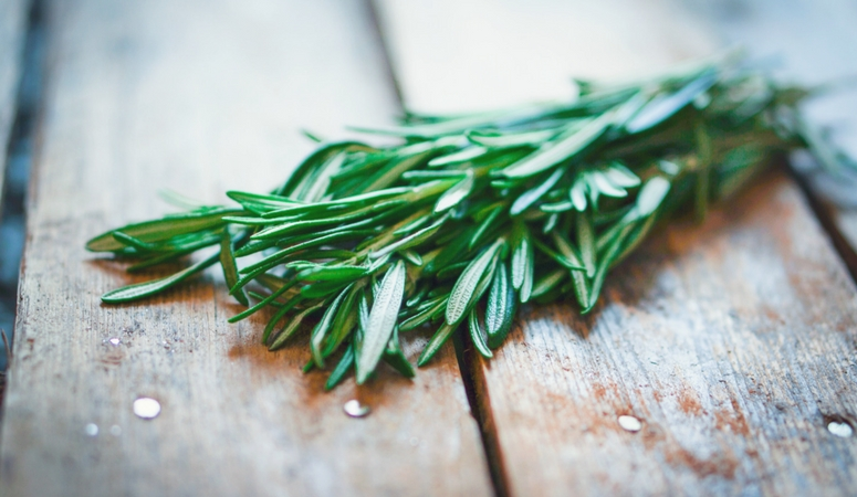 Rosemary essential oil benefits and uses.