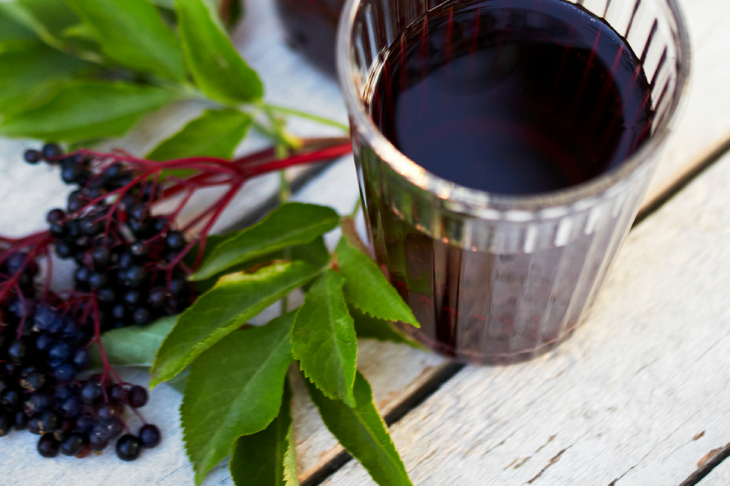 Immune Boosting Elderberry Syrup The Happy Herbal Home