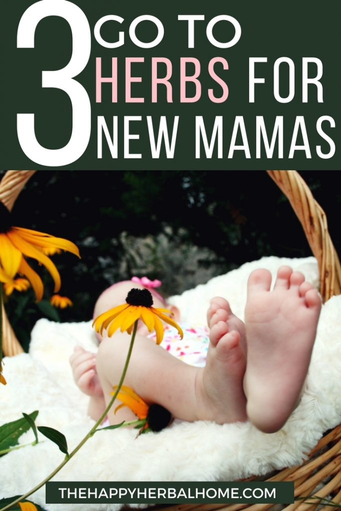 3 Herbs every new mama should have!