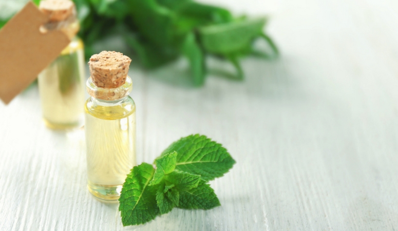 peppermint essential oil benefits and uses.