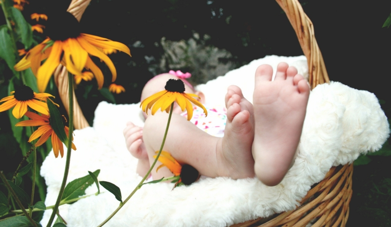Plants beneficial for new moms